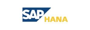 SAP-BD